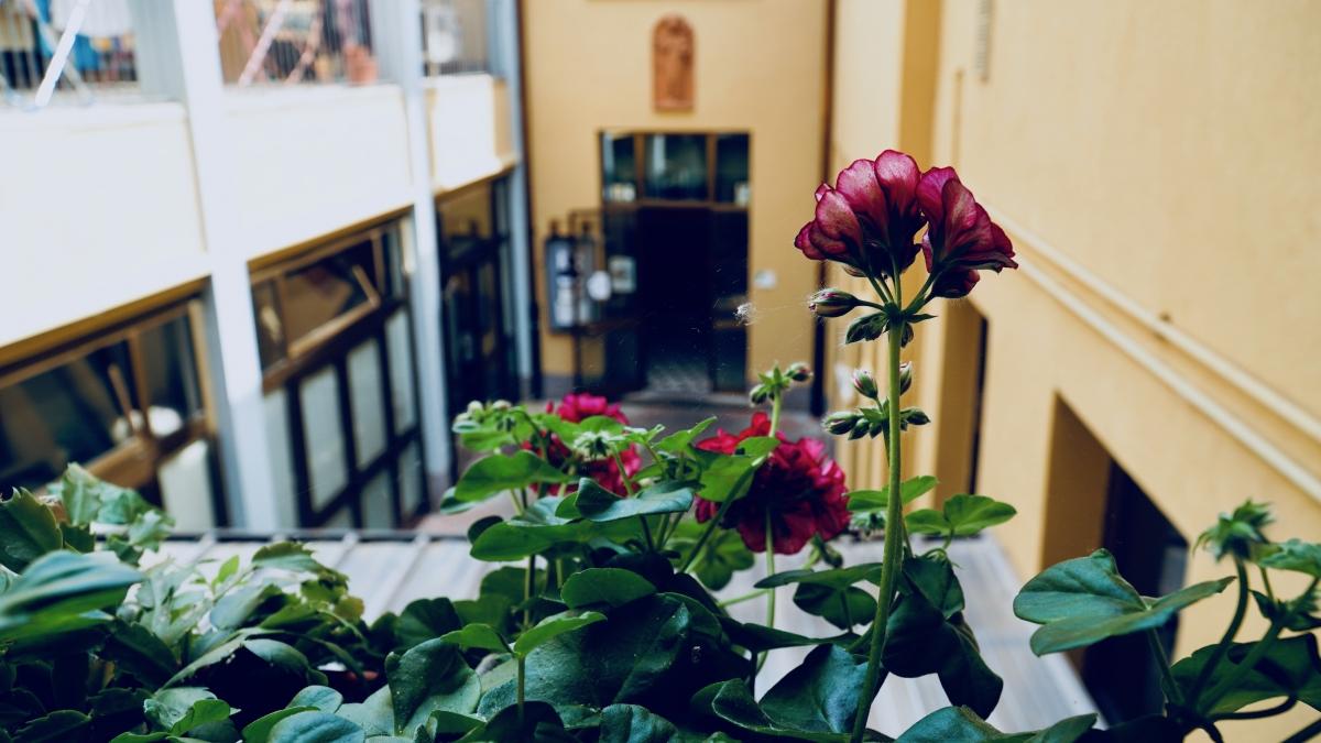 Cortile interno Casa di Accoglienza San Giacomo